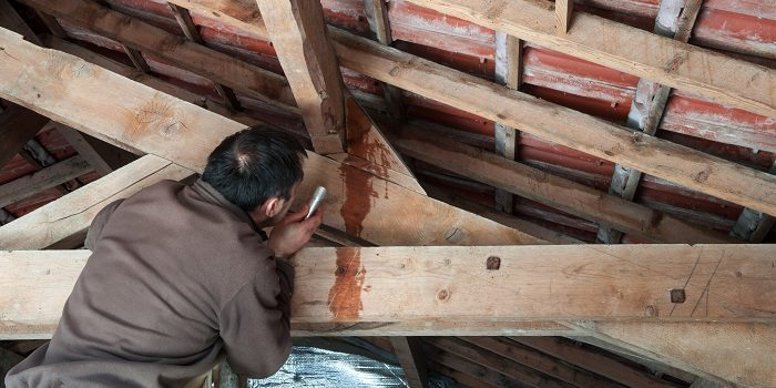 Tips on find the leak in your roof